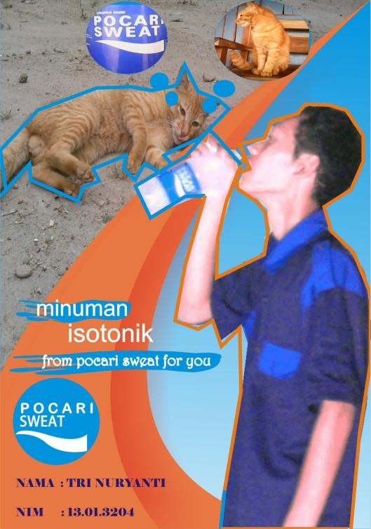 cat like pocari_13.01.3204